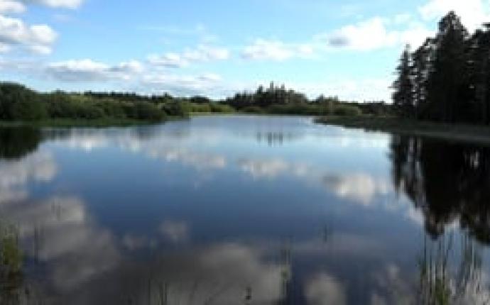 Våtmarken Boters myr
